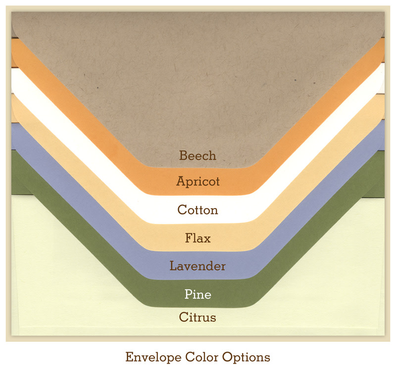 Envelope Options - Premium Colors